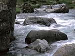 Floden i Vallee d'Ossau